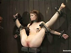 bound bdsm, device bondage, submission, tied