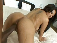 Sexy brunette vanessa lane spreads wide for a deep black cock pounding