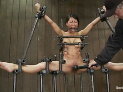 shaved, humiliation, fetish, orgasm, chained, slave, bdsm, asian